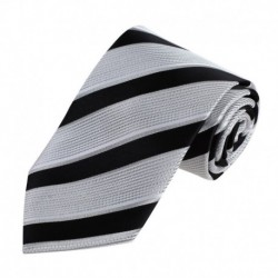 DAA7A01-03 Multicolored Stripes Tie Woven Microfiber With Gift Box By Dan Smith