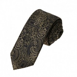 EAE2B.01 Multi-colored Paisley Gift Idea Microfiber Slim Mens Skinny Tie By Epoint