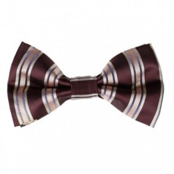 DBD7A01-03 Multi-colors Stripes Style Polyster Pre-Tied Bow Tie By Dan Smith