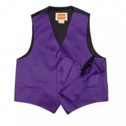 DGDE0013 Purple Boys Solid Microfiber Vest Neck Tie For Age 6-16 By Dan Smith
